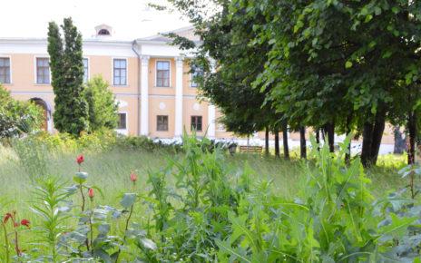 Территория Музея Рериха заросшая травой